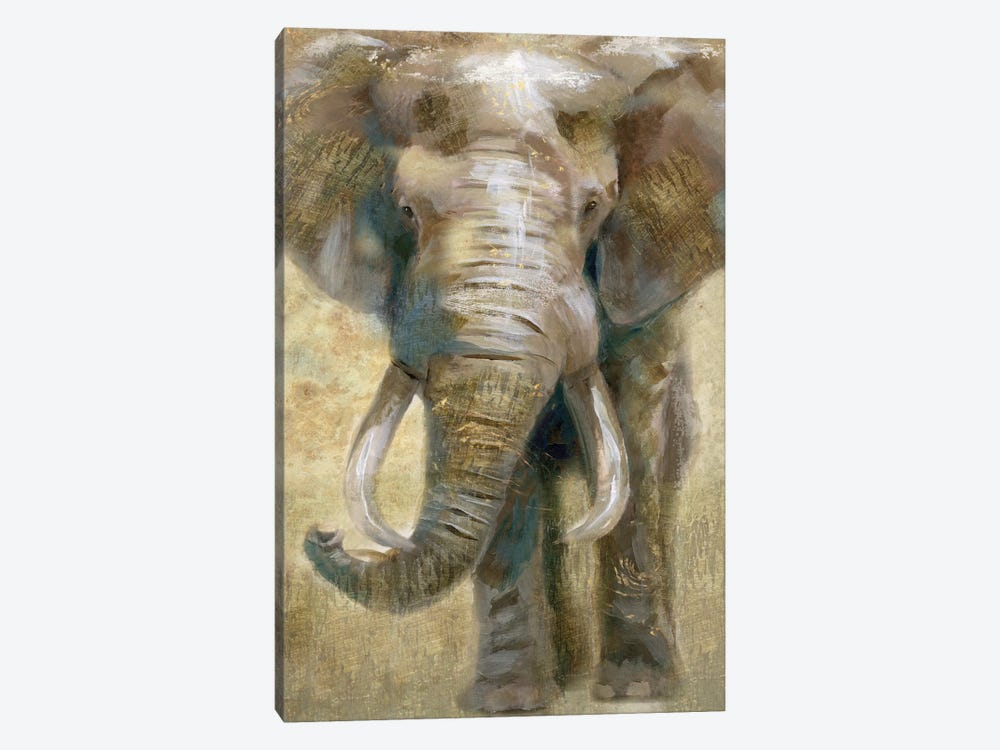 Summer Safari Elephant by Nan 1-piece Canvas Art