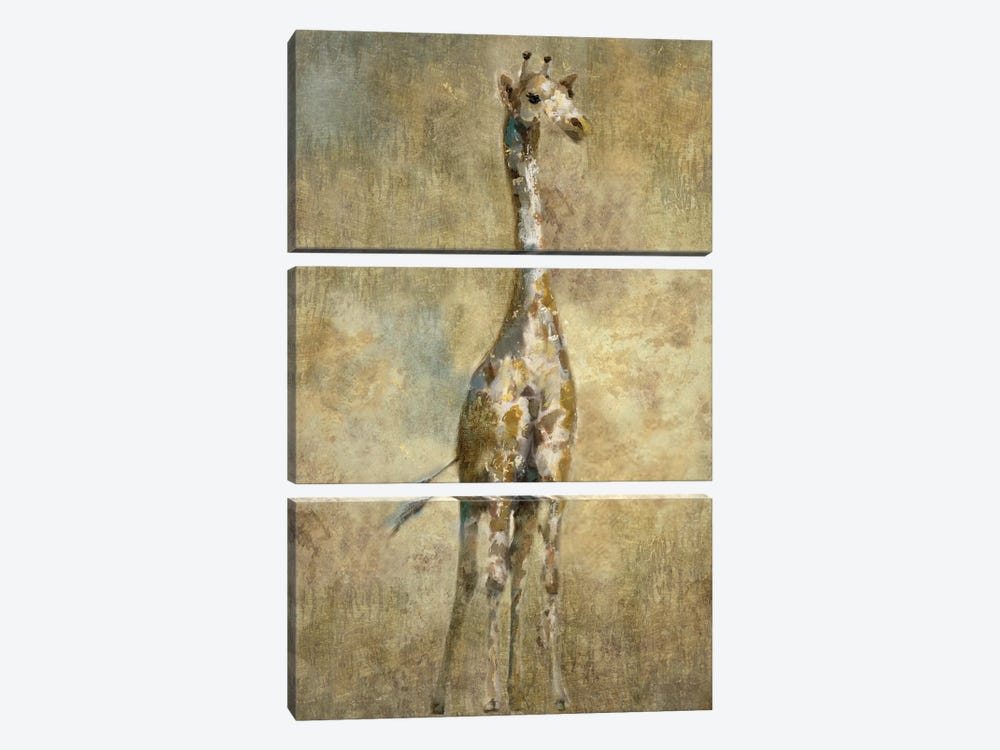 Summer Safari Giraffe by Nan 3-piece Canvas Print
