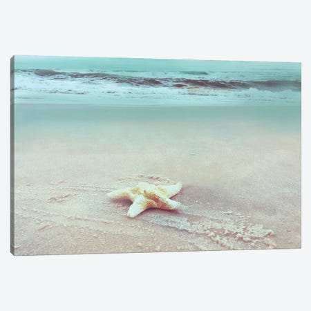 Beach Set Starfish Canvas Print #NAN208} by Nan Canvas Wall Art
