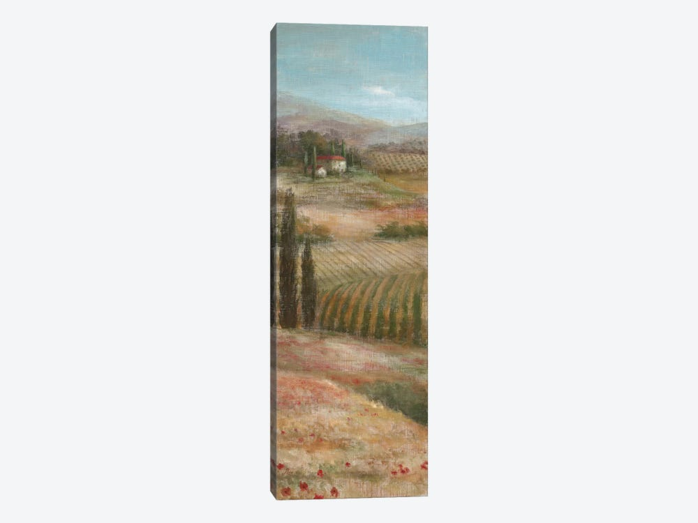 Valley VIew I by Nan 1-piece Canvas Wall Art