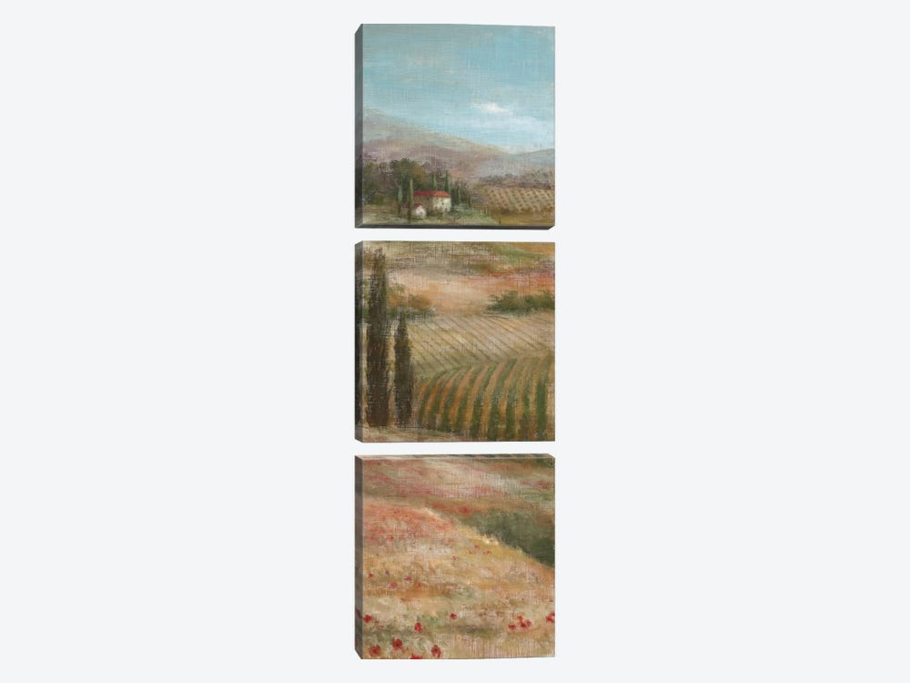 Valley VIew I by Nan 3-piece Canvas Wall Art