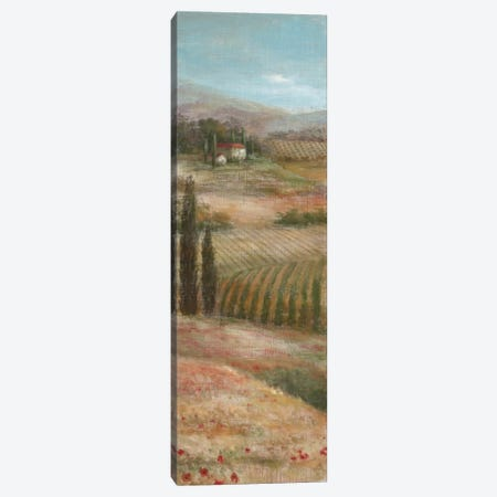 Valley VIew I Canvas Print #NAN20} by Nan Art Print