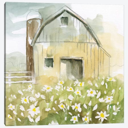 Daisy Barn Canvas Print #NAN217} by Nan Canvas Artwork