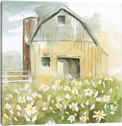Daisy Barn Canvas Art Print