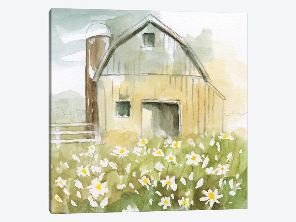 Daisy Barn by Nan 1-piece Canvas Print