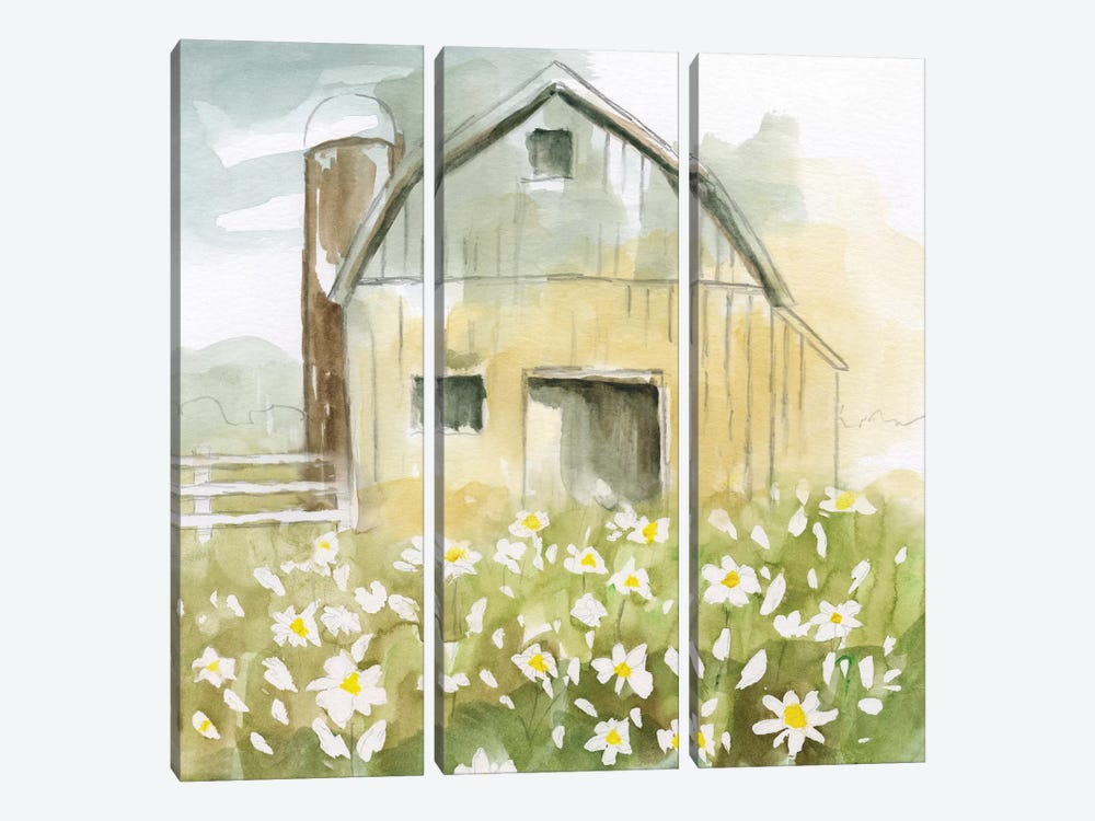 Daisy Barn by Nan 3-piece Canvas Print