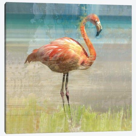 Flamingo Fancy I Canvas Print #NAN219} by Nan Art Print