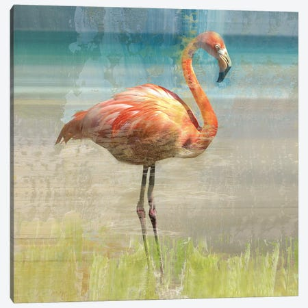 Flamingo Fancy I Canvas Print #NAN219} by Nan Art Print