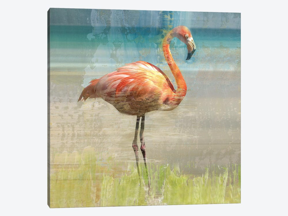 Flamingo Fancy I by Nan 1-piece Canvas Print