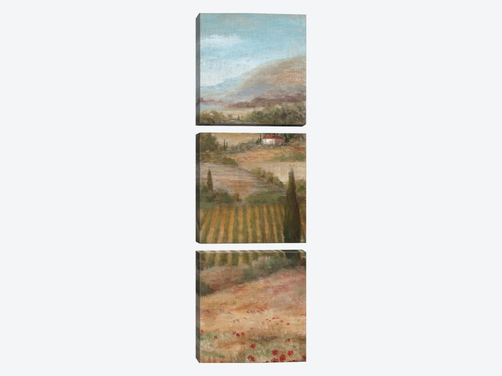 Valley VIew II by Nan 3-piece Canvas Print