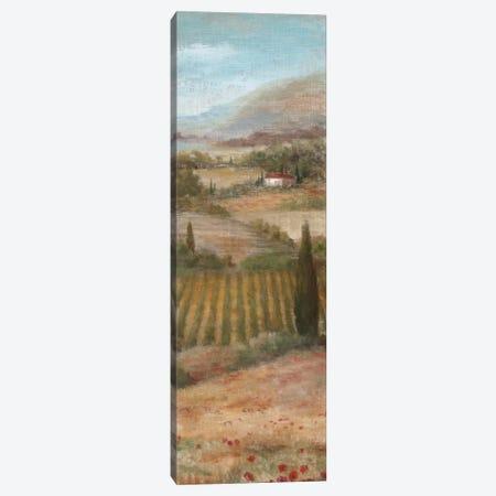 Valley VIew II Canvas Print #NAN21} by Nan Art Print