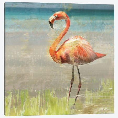 Flamingo Fancy II Canvas Print #NAN220} by Nan Canvas Art