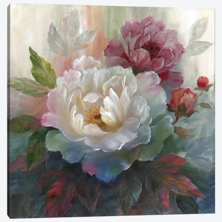 White Roses I Canvas Print #NAN22} by Nan Canvas Print