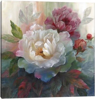 White Roses I Canvas Print #NAN22