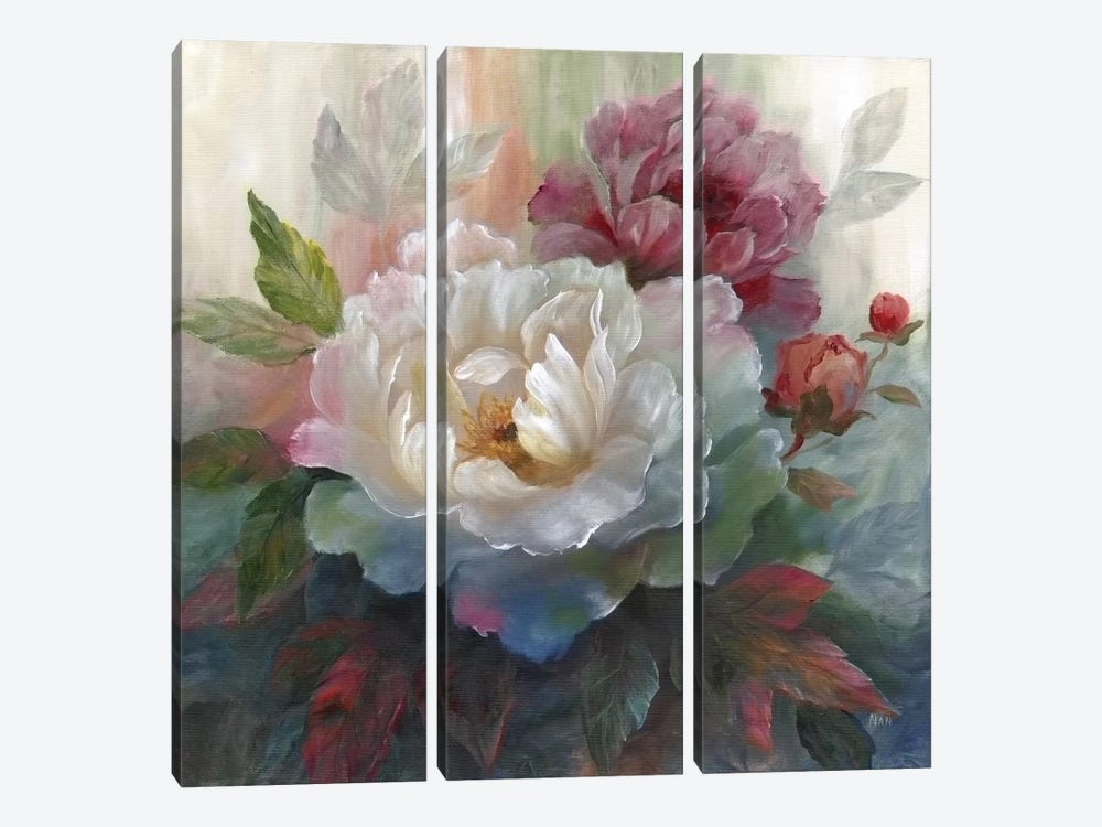 White Roses I by Nan 3-piece Canvas Artwork