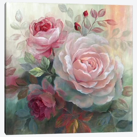 White Roses II Canvas Print #NAN23} by Nan Art Print