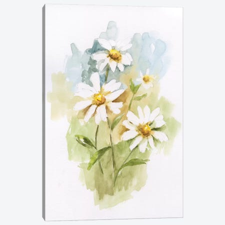 Wild Daisy I Canvas Print #NAN247} by Nan Canvas Print