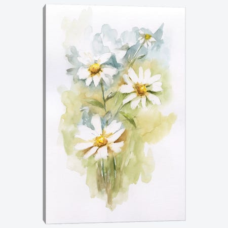 Wild Daisy II Canvas Print #NAN248} by Nan Canvas Wall Art