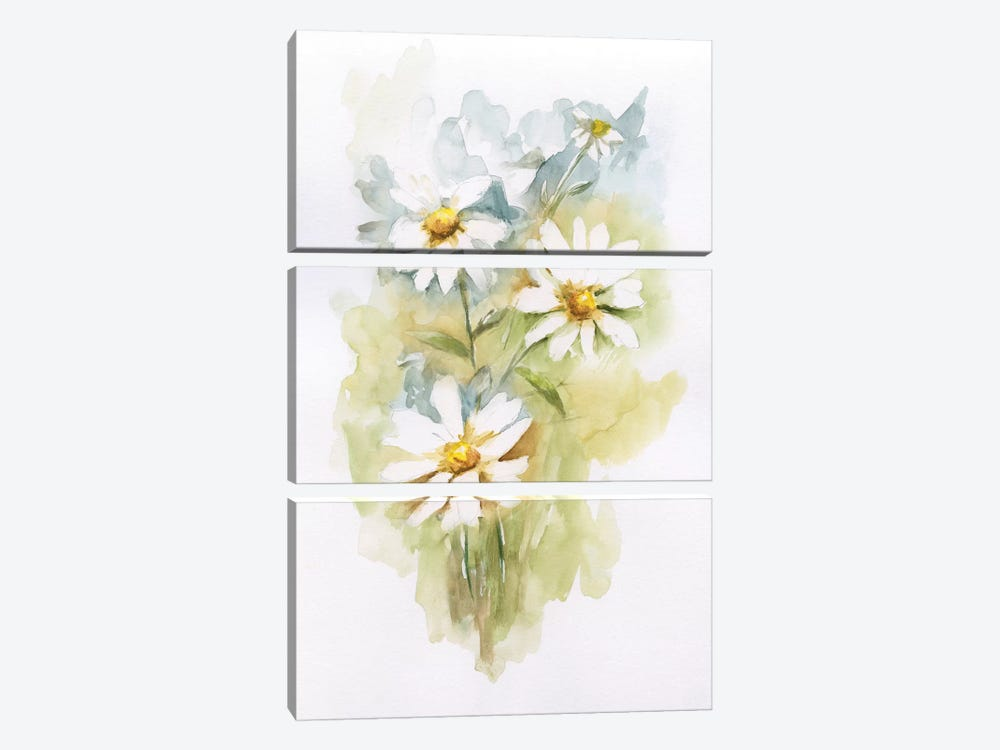 Wild Daisy II by Nan 3-piece Canvas Print