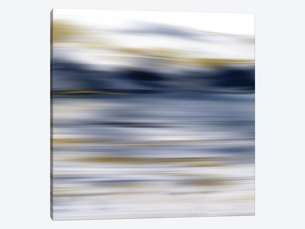 Windswept 1-piece Canvas Wall Art
