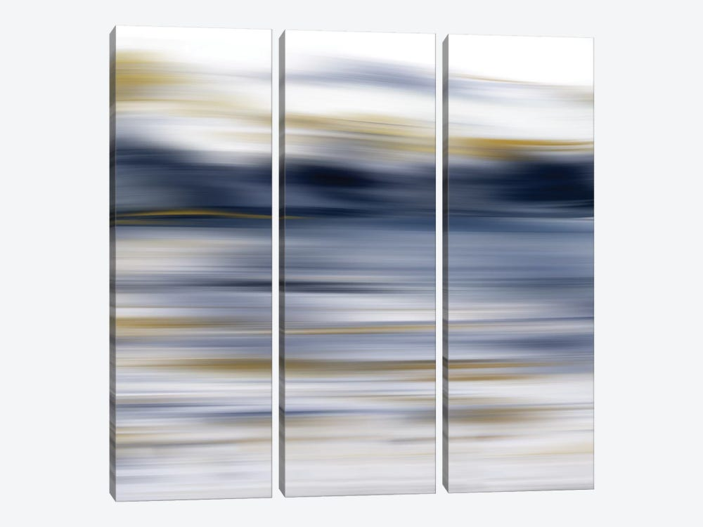 Windswept by Nan 3-piece Canvas Wall Art