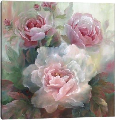 White Roses III Canvas Print #NAN24