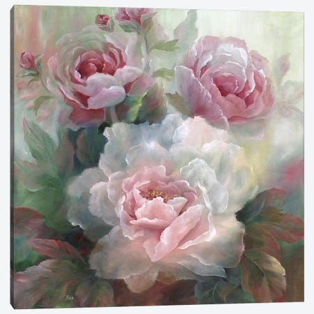 White Roses III Canvas Print #NAN24} by Nan Canvas Wall Art