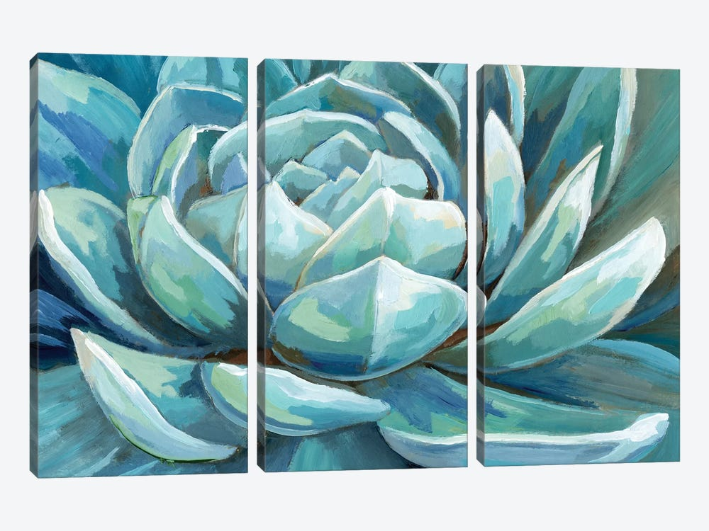 Cerulean Succulent by Nan 3-piece Canvas Art Print