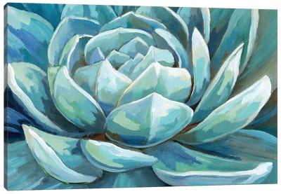 Cerulean Succulent Canvas Art Print