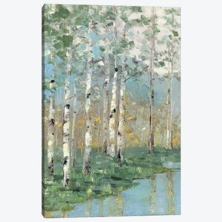 Birch Reflections I Canvas Print #NAN272} by Sally Swatland Art Print