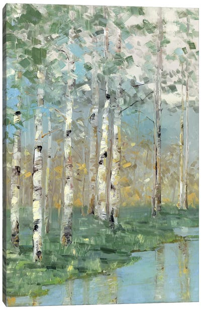 Birch Reflections I Canvas Art Print