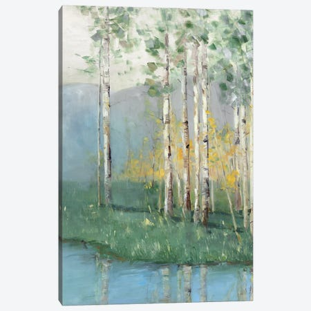 Birch Reflections II Canvas Print #NAN273} by Sally Swatland Art Print