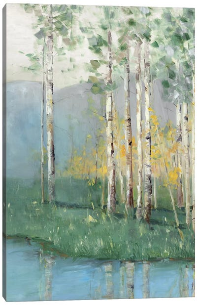 Birch Reflections II Canvas Art Print