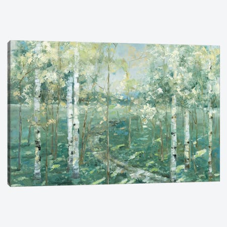 Meadow Light Canvas Print #NAN274} by Sally Swatland Canvas Wall Art