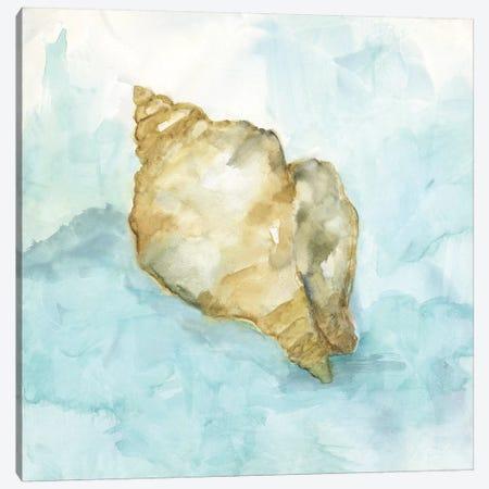 Biscayne Treasure I 3-Piece Canvas #NAN278} by Nan Art Print
