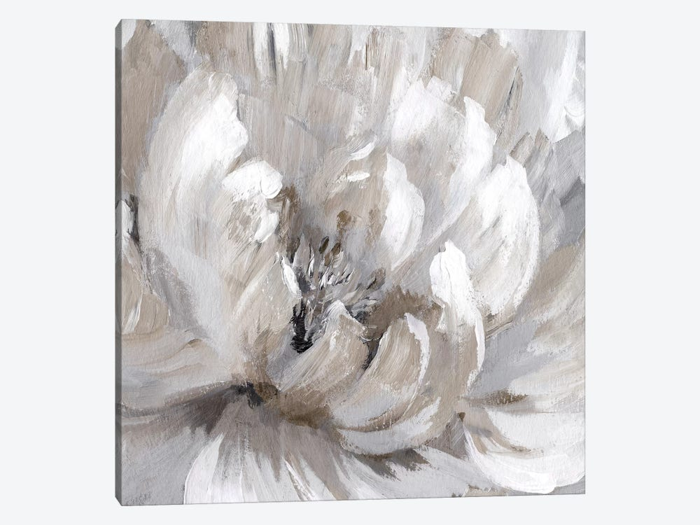 Burst Of Spring II by Nan 1-piece Canvas Artwork