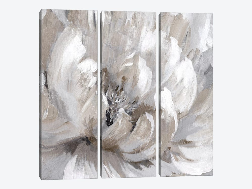Burst Of Spring II by Nan 3-piece Canvas Wall Art