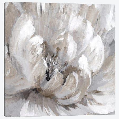 Burst Of Spring II Canvas Print #NAN283} by Nan Canvas Wall Art