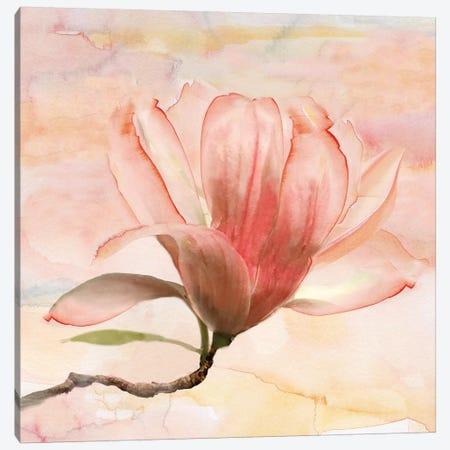 Dreamy Magnolia I 3-Piece Canvas #NAN287} by Nan Art Print
