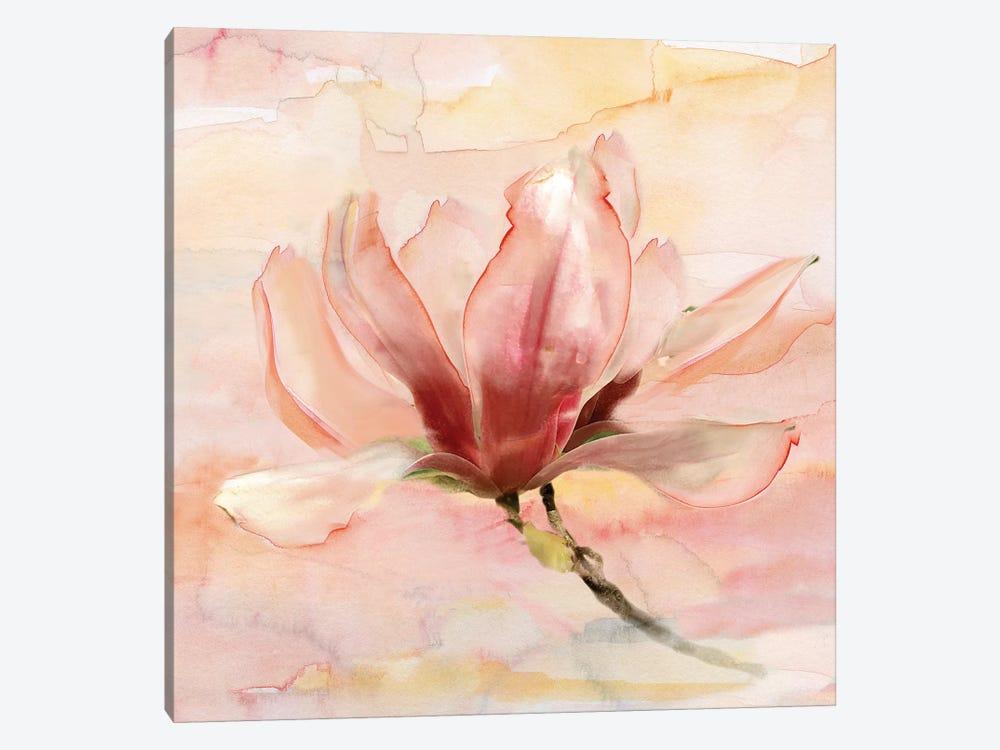 Dreamy Magnolia II by Nan 1-piece Art Print