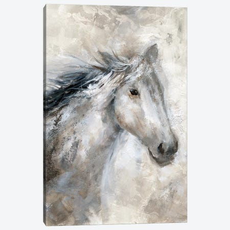 Neutral Horse Canvas Print #NAN298} by Nan Canvas Print