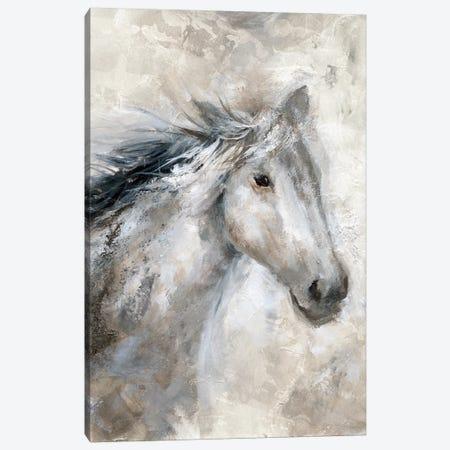 Neutral Horse Canvas Print #NAN298} by Nan Canvas Print