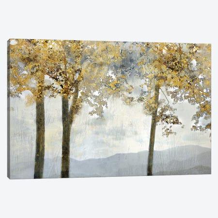 Ridgetop View Canvas Print #NAN300} by Nan Canvas Art Print
