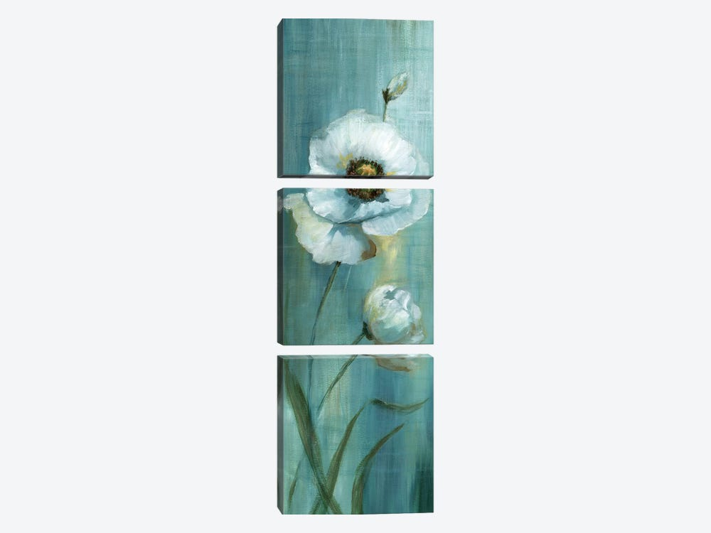 Seabreeze Poppy I by Nan 3-piece Canvas Wall Art