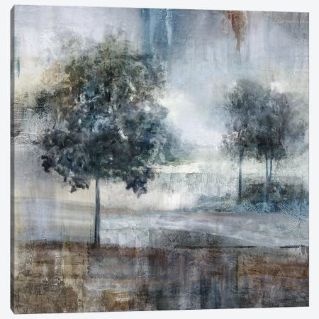 Shades Of Gray Canvas Print #NAN304} by Nan Canvas Artwork