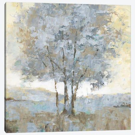 Soft Sentinel I Canvas Print #NAN305} by Nan Canvas Artwork