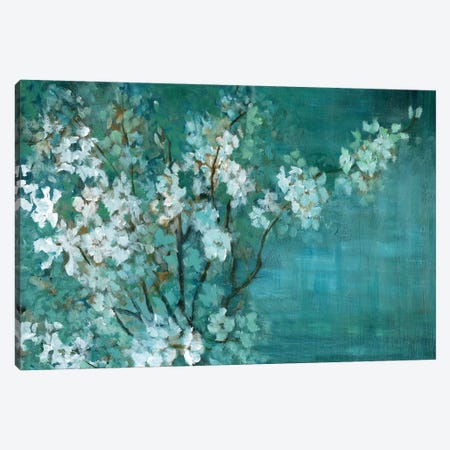 Springs Offering Canvas Print #NAN308} by Nan Canvas Print