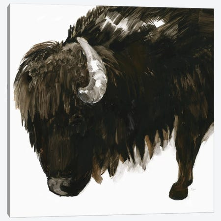 Bison Bull Canvas Print #NAN321} by Nan Canvas Print