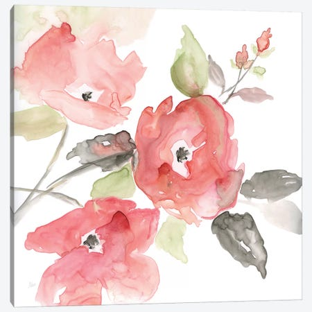 Coral Blush I Canvas Print #NAN327} by Nan Canvas Art