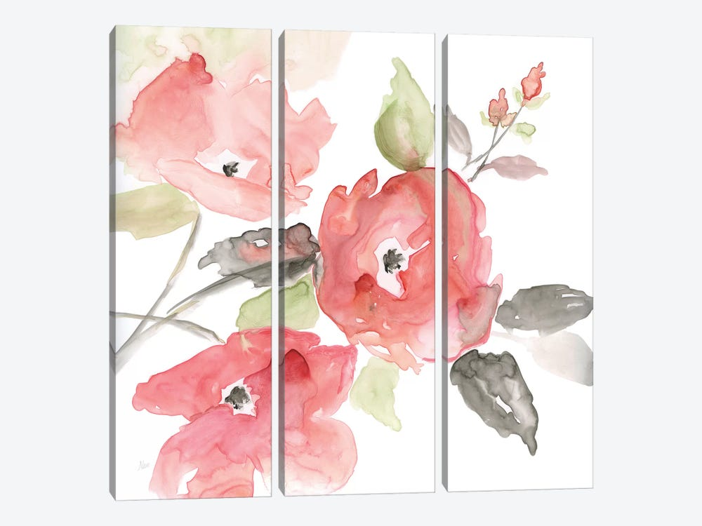 Coral Blush I by Nan 3-piece Canvas Print